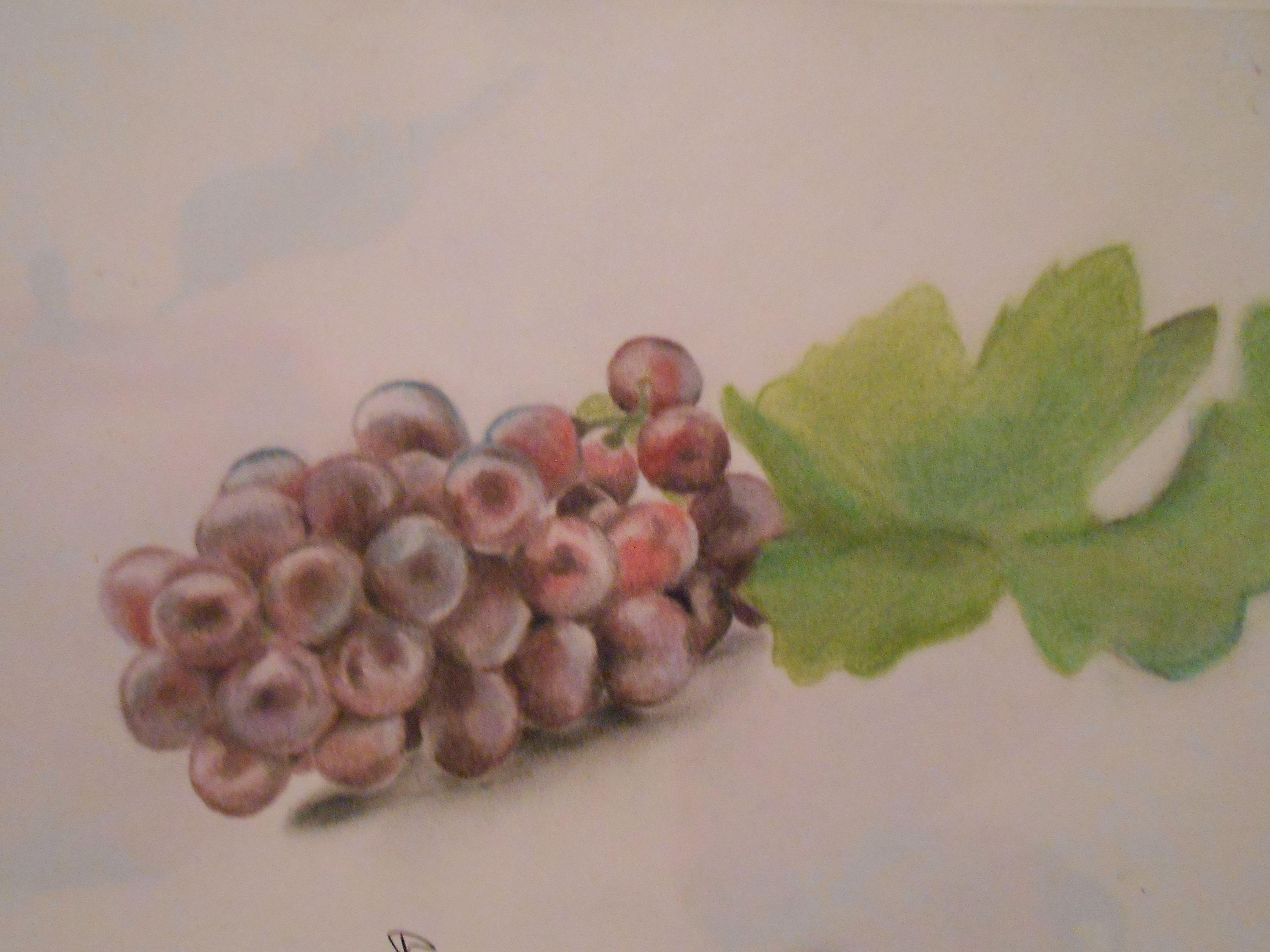 unas uvas con gis pastel :)