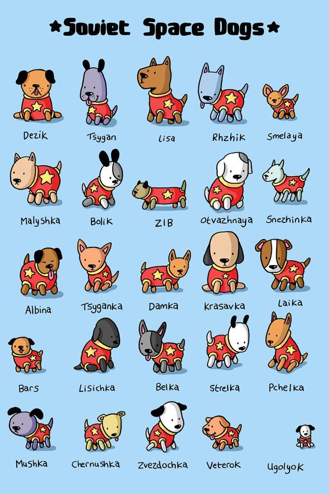 A Tribute To Soviet Space Dogs By Jess Bradley Space Dog Soviet Space Dogs Dog Illustration