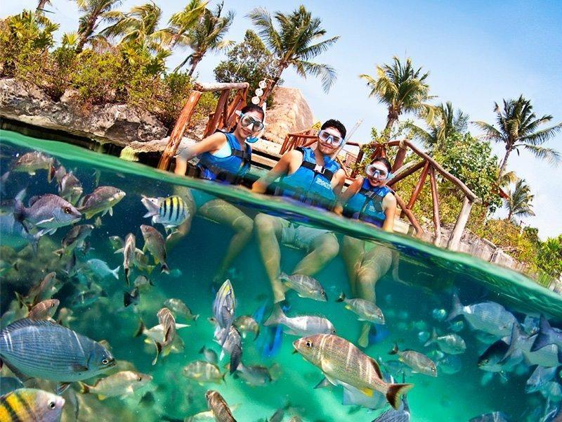 Xel-Ha todo incluido + transportación | Vacaciones en mexico, Snorkel, Viajes culturales