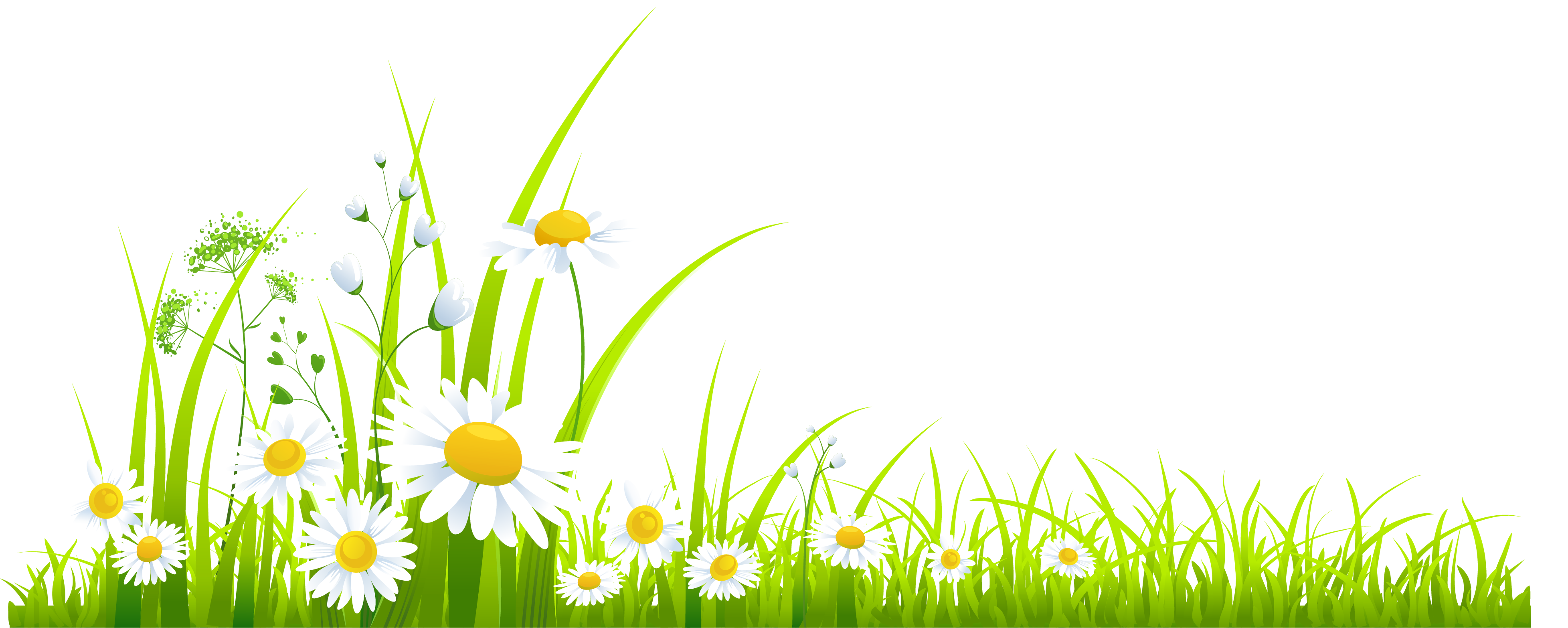 hight resolution of spring grass clipart