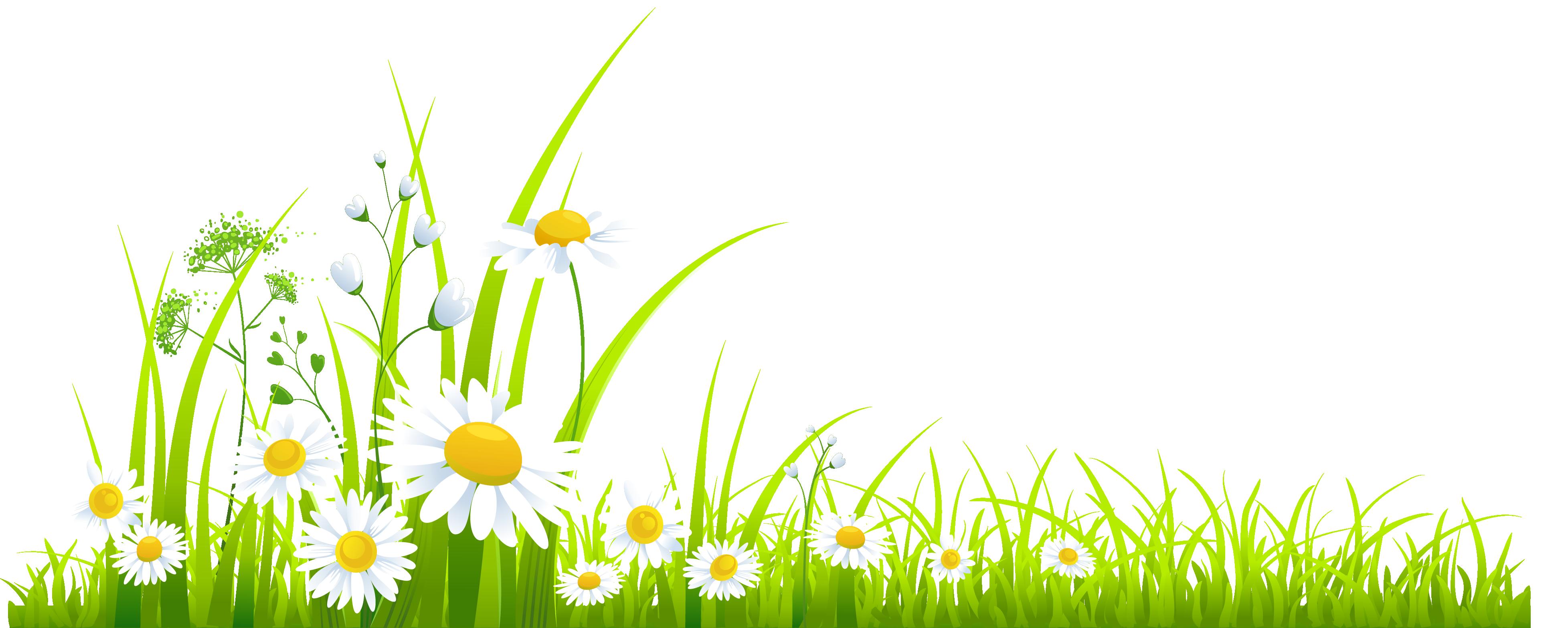 spring grass clipart [ 3911 x 1566 Pixel ]