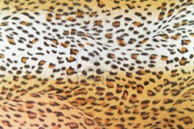 Struttura Leopardo Foto Royalty Free, Immagini, Immagini E Archivi Fotografici. Image 14206641.