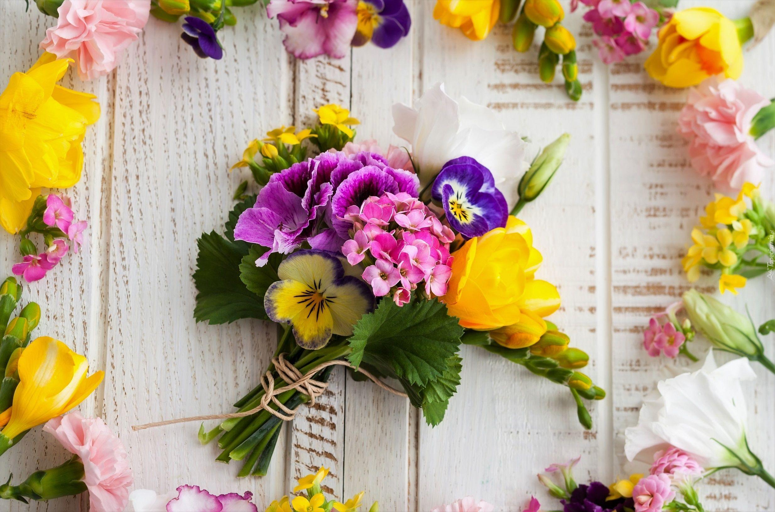Kwiaty Bukiet Deski Bratki Frezje Gozdziki Kalanchoe Beautiful Flowers Flora Flowers Colorful Flowers
