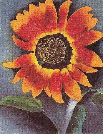 Sunflower - Georgia O'Keeffe 1921 | Artistas, Obras de arte