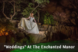 Enchanted Manor Events