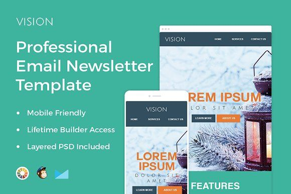 Vision  Professional Email Template By Zippypixels On