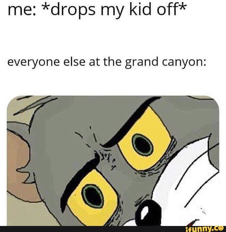 Me: *drops my kid off* everyone else at the grand canyon: – iFunny :)