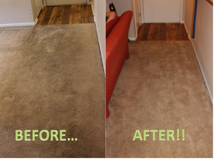rug doctor review after two cleanings | for our fans | pinterest