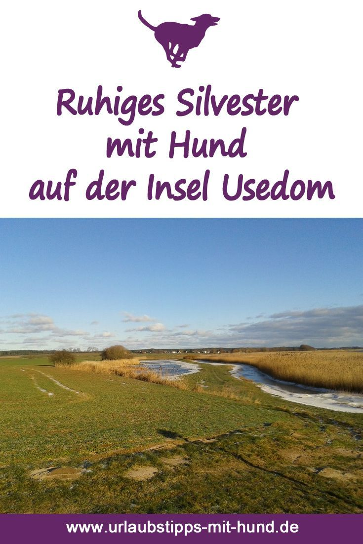 Ruhiges Silvester mit Hund in Stolpe auf Usedom