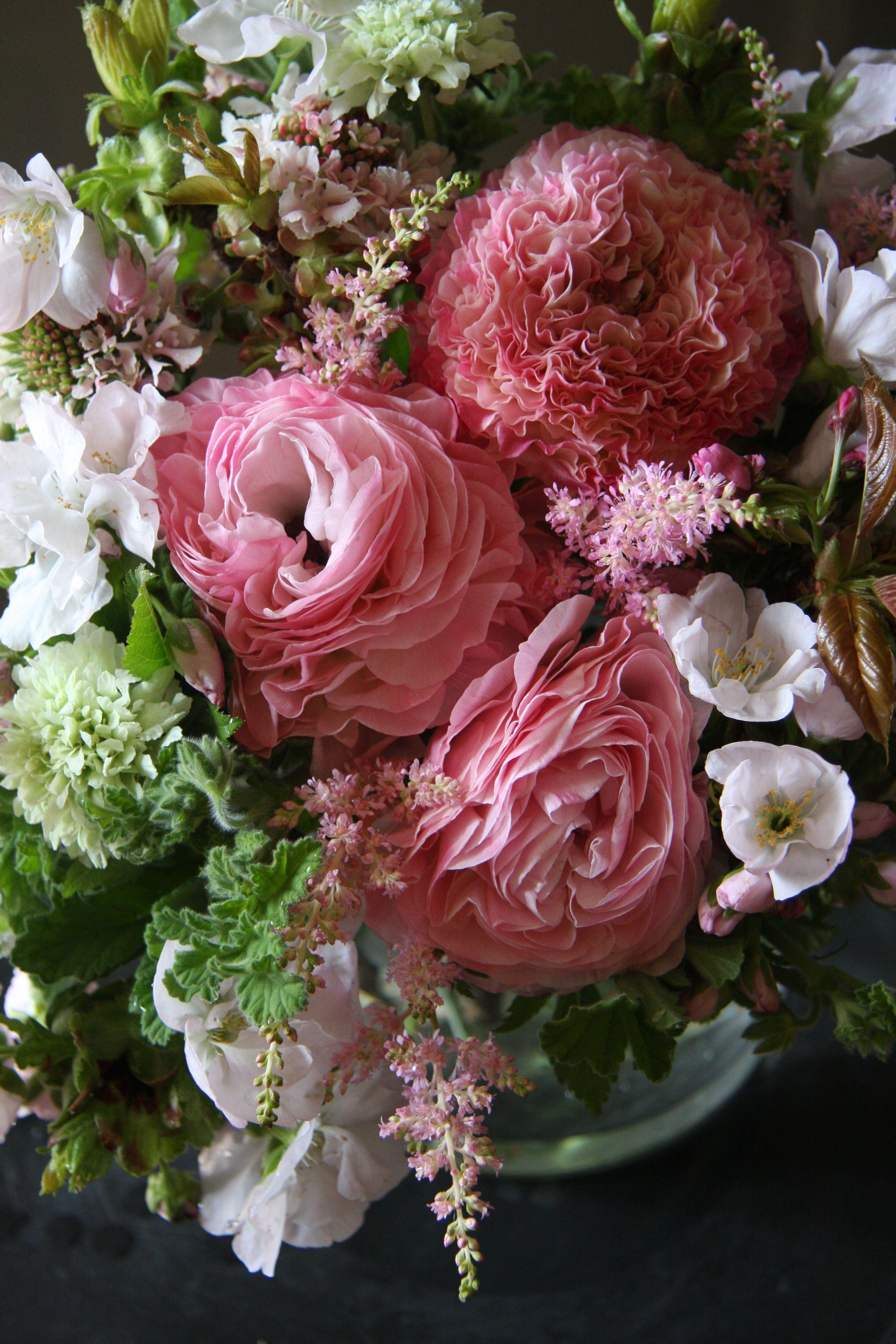 Ranunculusastilbescabiosa And Cherry Blossomless Creamoff