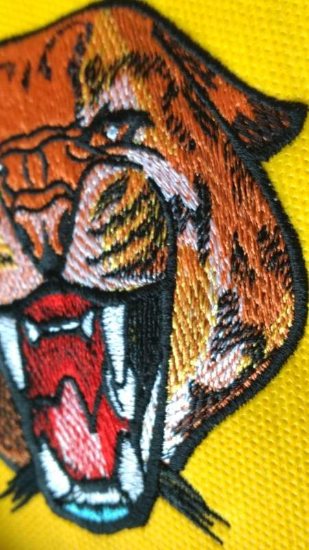 Wild Cheetah 6 Embroidery Design Cheetahs Embroidery Designs And