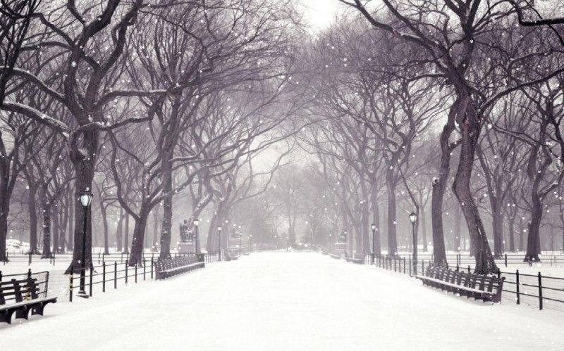 Free Winter Snow Image Download - Winter Snow Image