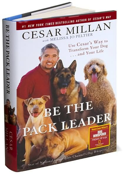 Be The Pack Leader By Cesar Millan Cesar Millan Dogs Dog