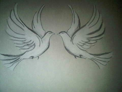 Two white doves tattoo art sketches pinterest white for Two doves tattoo