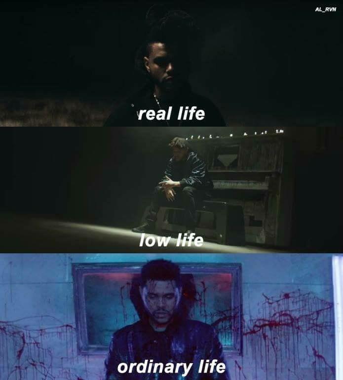 Lyric starboy lyrics : ✨• @meana__love •âœ¨ | The Weeknd XO❤ | Pinterest | Abel makkonen ...