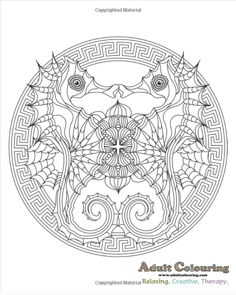 Coloring Ocean Mandalas Animal Adult Colouring Book Collection