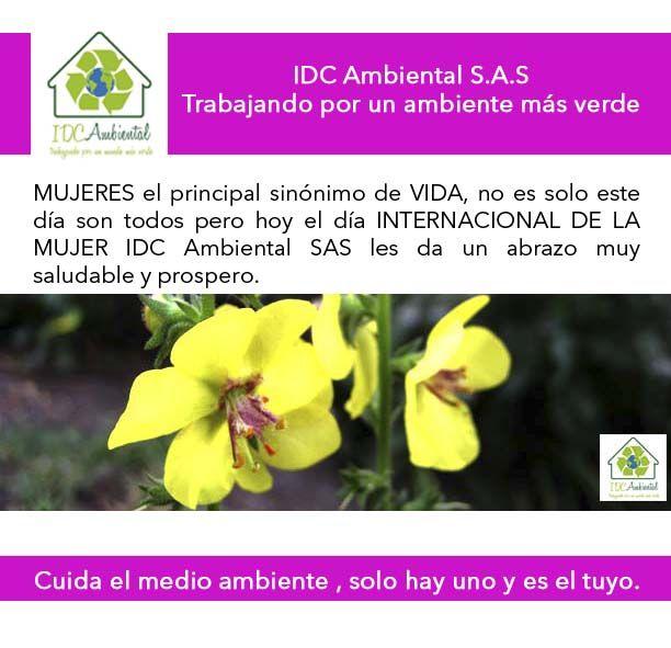 Pin En Idc Ambiental Medio Ambiente