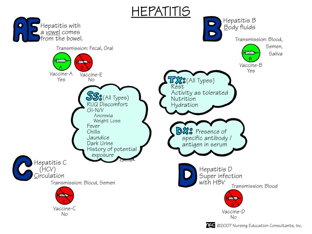 ncp hepatitis b The infection control precautions for hepatitis b are those of blood and body fluid precautions and those of universal precautions gloves, preferably latex, are worn when there is to be.