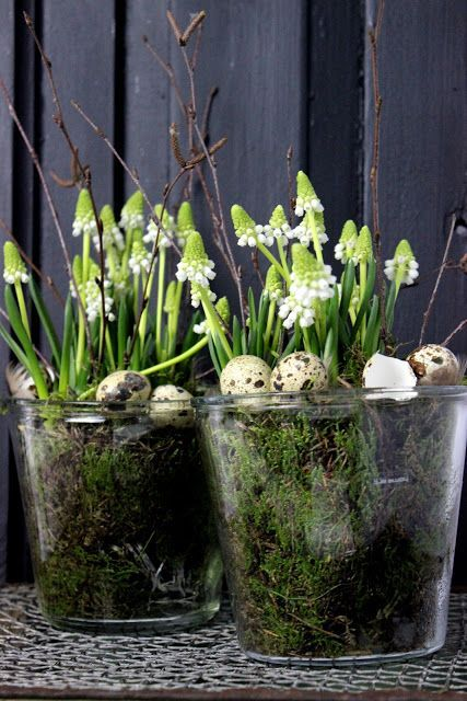 Katjas Home Wielkanoc Easter Pinterest Thomas Mann