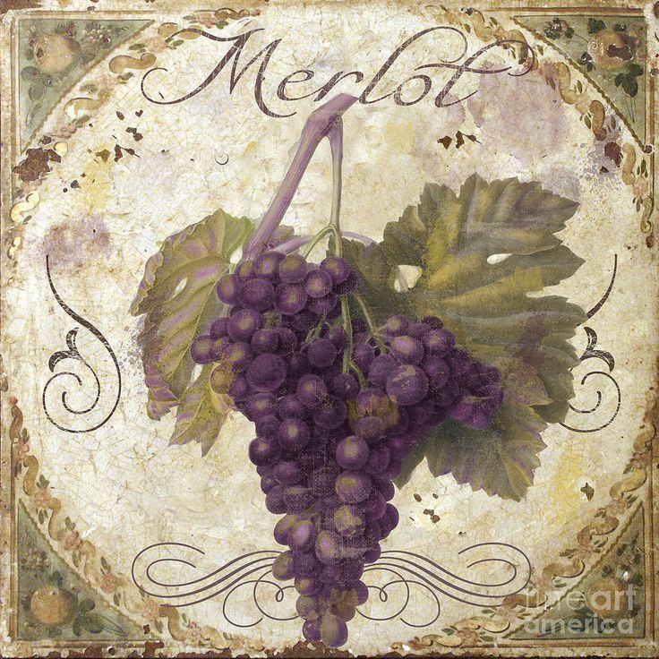 Виноградники на склонах фото рекомендуем