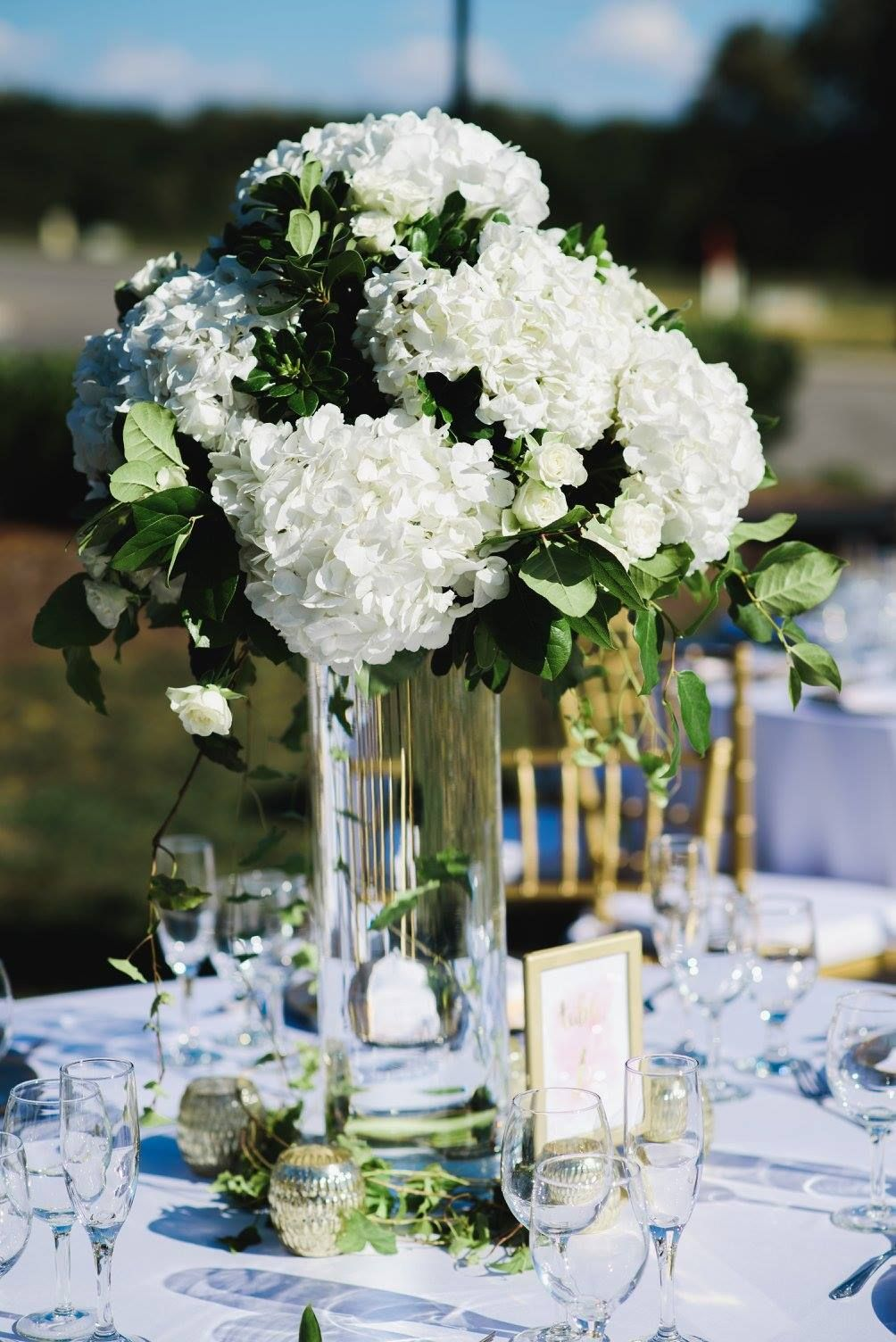 Outdoor Wedding Reception Summer Wedding White And Green Wed