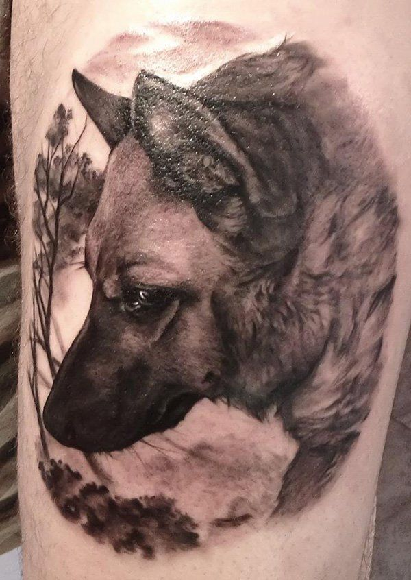 wolf tattoo - The wild carnivorous mammal wolf conveys symbolic meanings of Sharp intelligence, deep connection with instincts and Appetite for freedom.