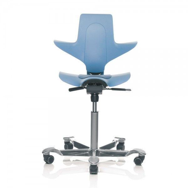 Hag Capisco Puls 8010 Ergonomic Office Chair Ergonomic Office Chair Ergonomic Office Office Chair