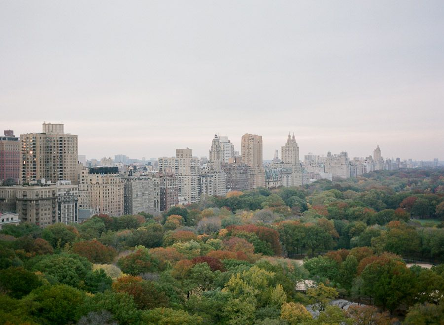 A view of Central Park taken from the NYAC Solarium.