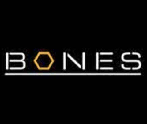 Bones Logo Bones Tv Show Tv Show Logos Logo Tv