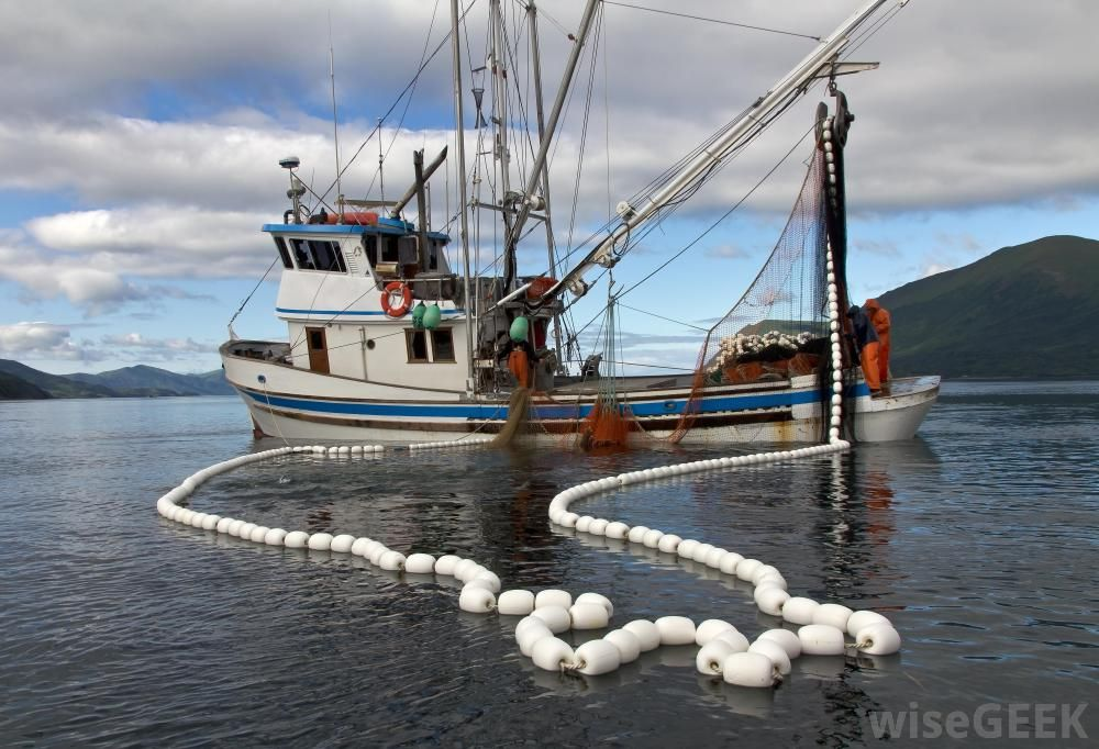 Commercial Fishing Boats Fishing Boats Are Designed And Used For