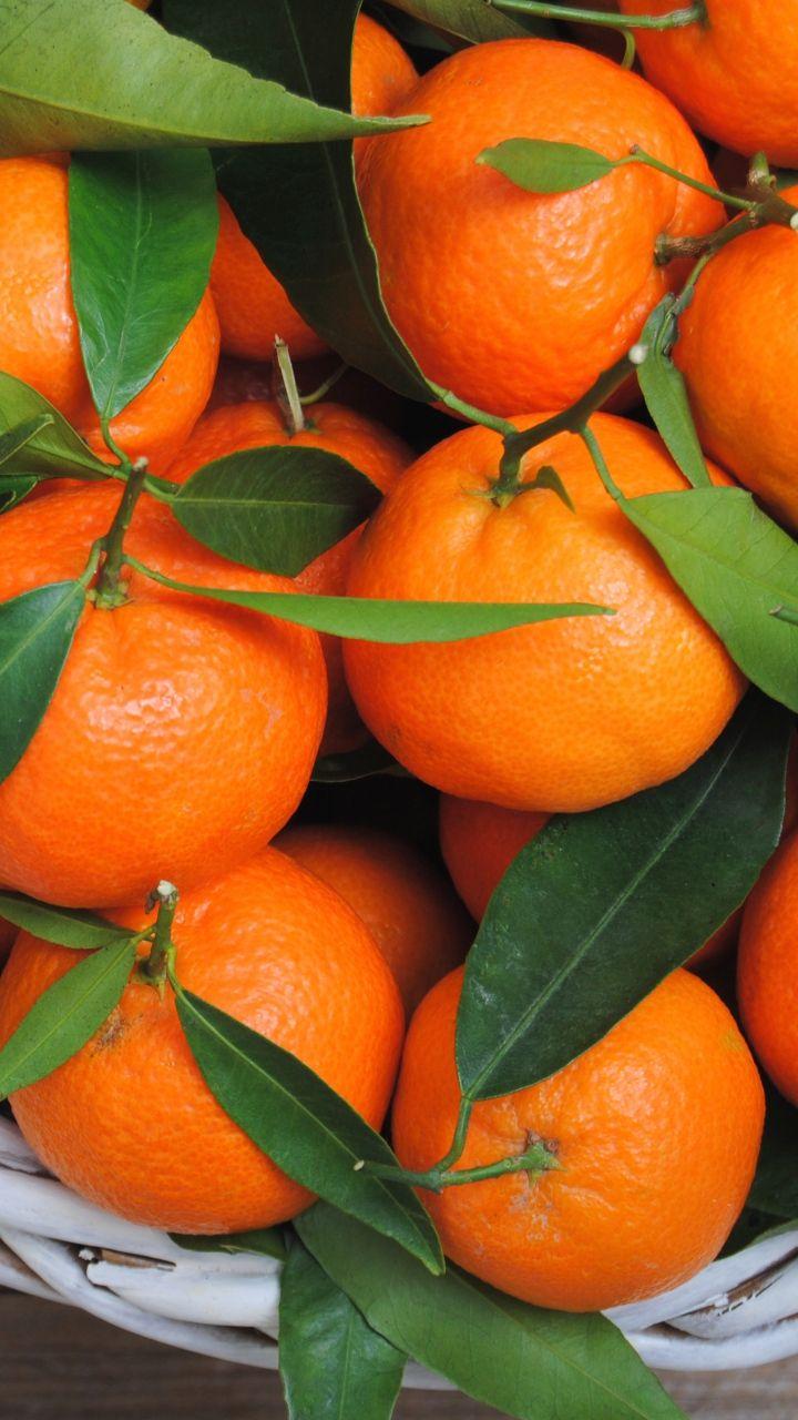 Download Wallpaper 720x1280 Tangerines Oranges Fruit Leaves Citrus Samsung Galaxy S3 Hd Background Orange Fruit Fruit Orange