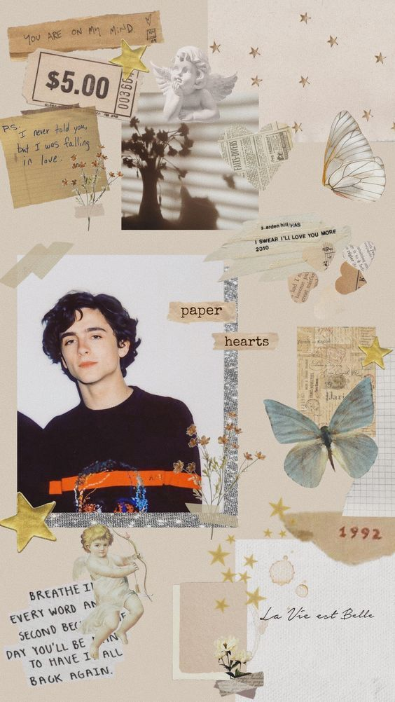 28 Aesthetic and Vintage Timothee Chalamet iPhone Wallpaper Ideas