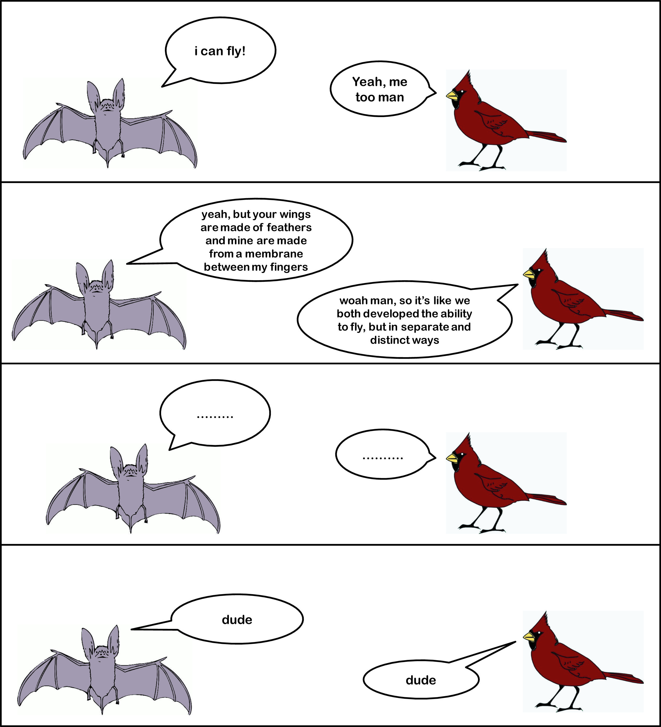 Image Result For Requirements For Evolution Comic With