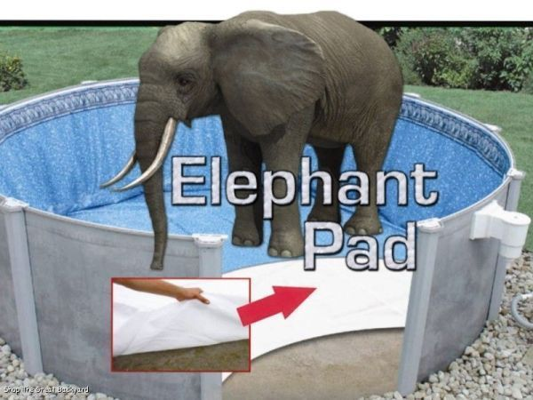 Details about pool liner pad elephant beats gorilla for Garden elephant pool