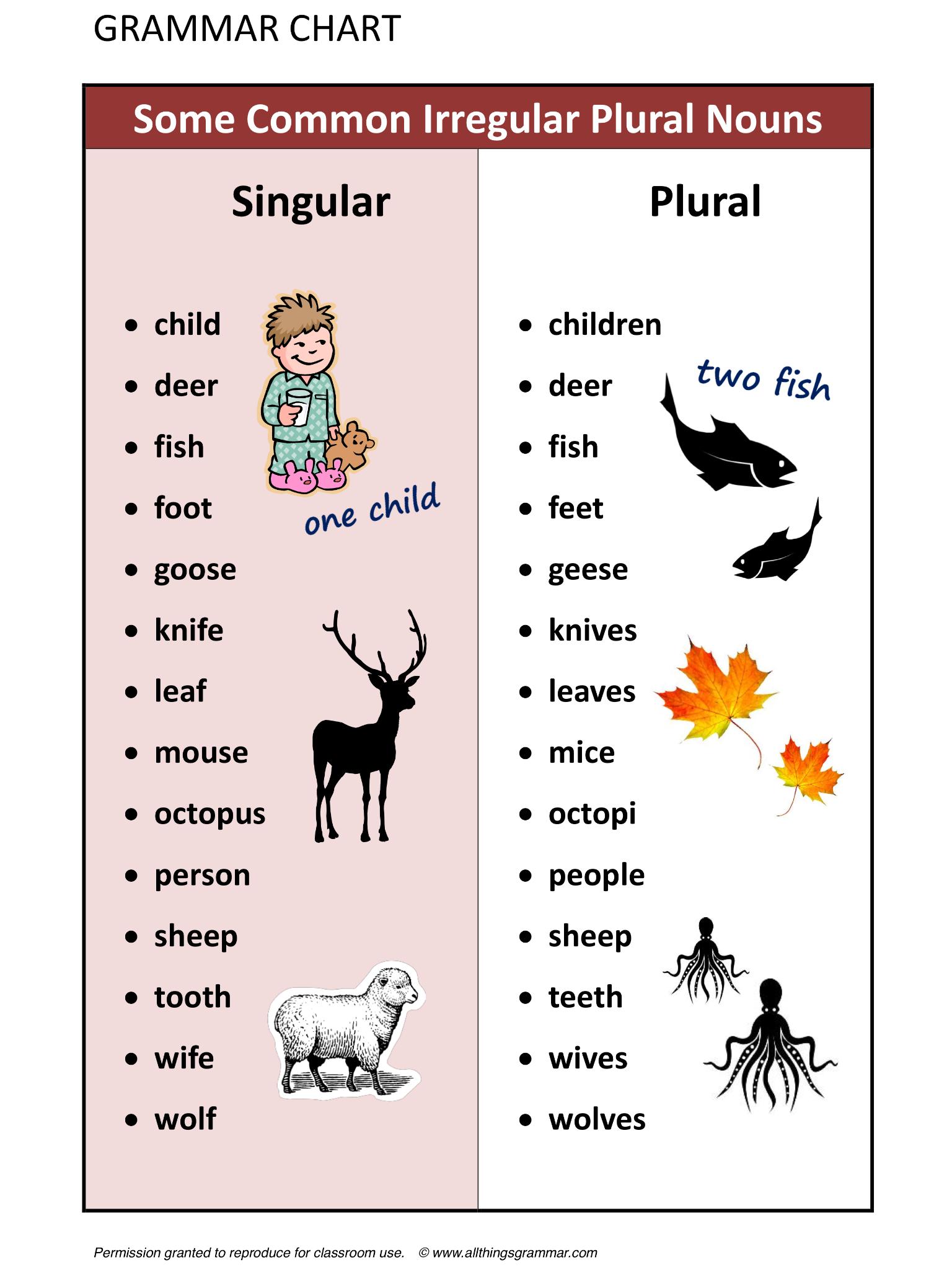 some common irregular plural nouns irregular nouns irregular plural nouns worksheet singular noun - Plural Of Christmas