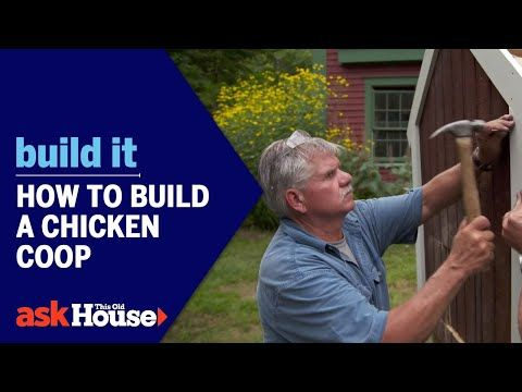 How to Build a Chicken Coop Build It