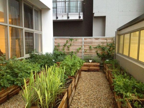 Biogarten Auf Der Terrasse Eine Gesunde Selbstproduktion Garten