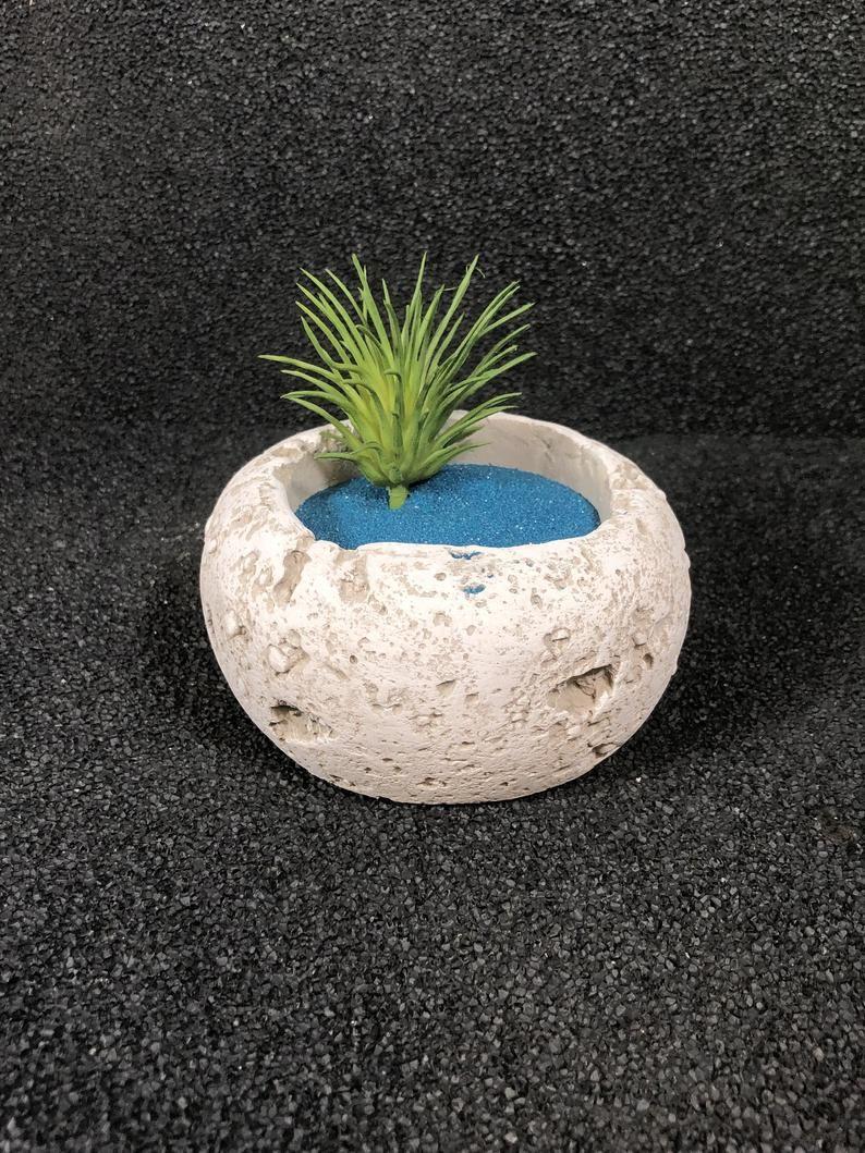 Small Round Bedrock Planter Zen Garden Miniature Garden Garden