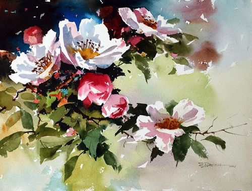 Blossoms Watercolor Flowers Floral Watercolor Flower Art