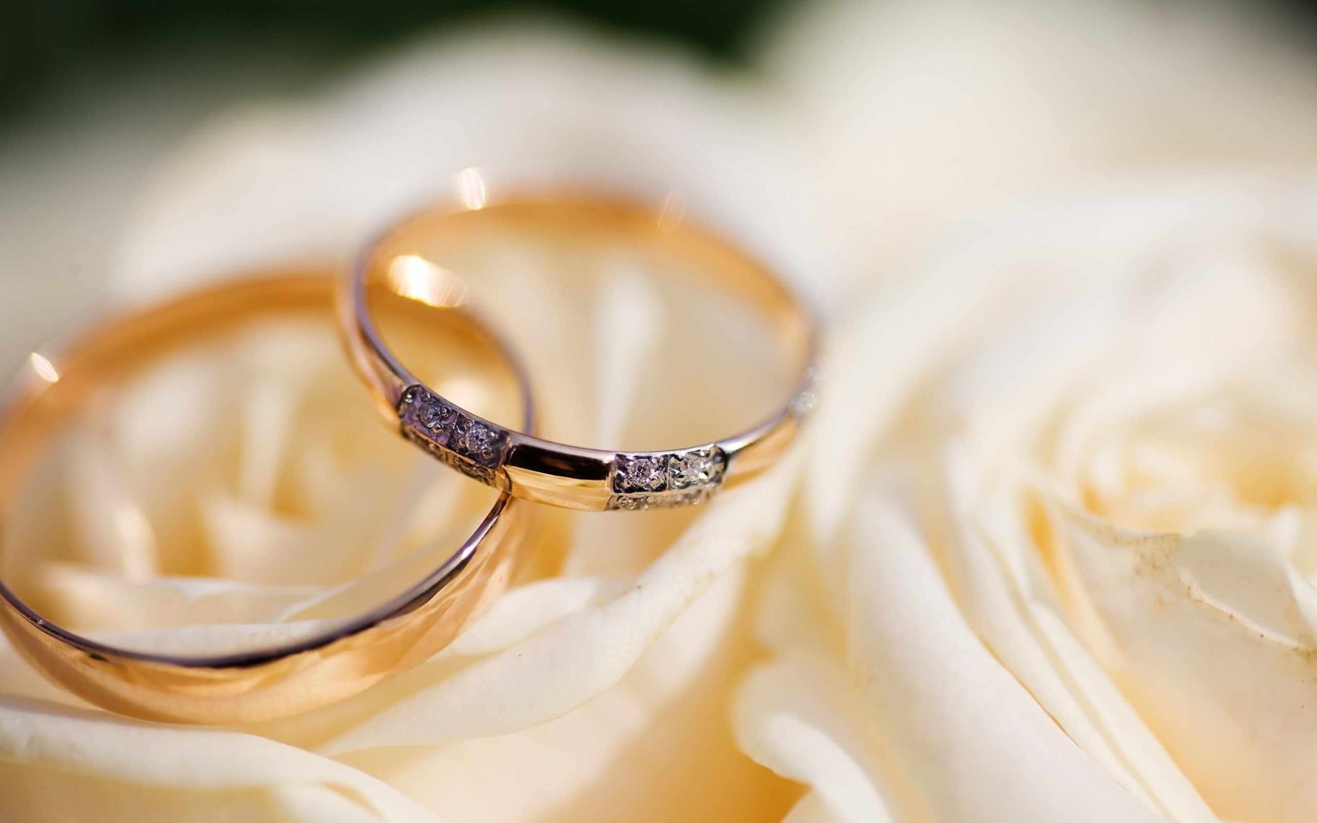 Pin By Silver Weekend On Wedding Photography Wedding Ring