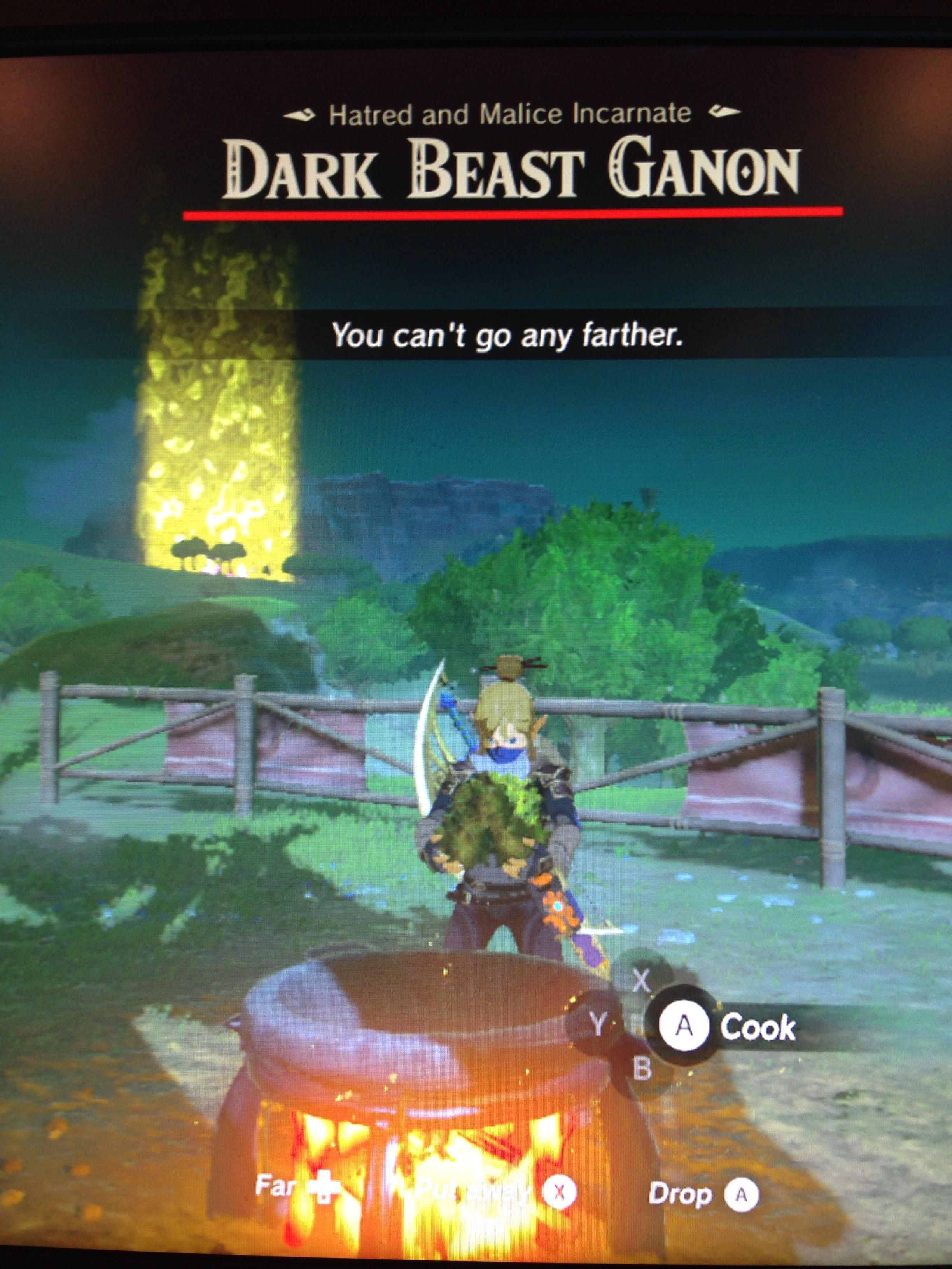 BOTW][SPOILER] When the world needs saving but cooking is life ...