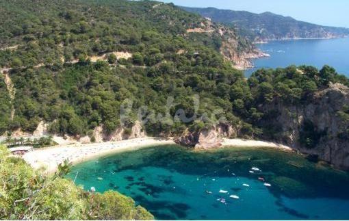 Fotos Playa Cala Giverola Tossa De Mar 3 4 Tossa De Mar Fotos Playa Playa