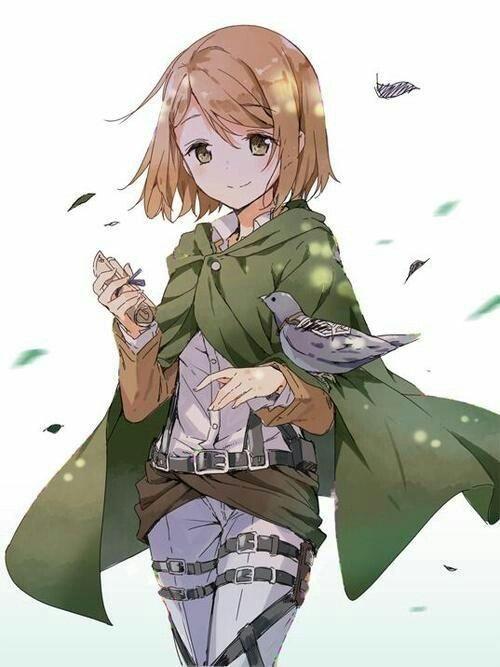 Pin by Alhixx on Shingeki no kyojin | Anime, Attack on ...