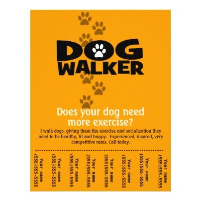 dog walking flyers templates image search results Animals