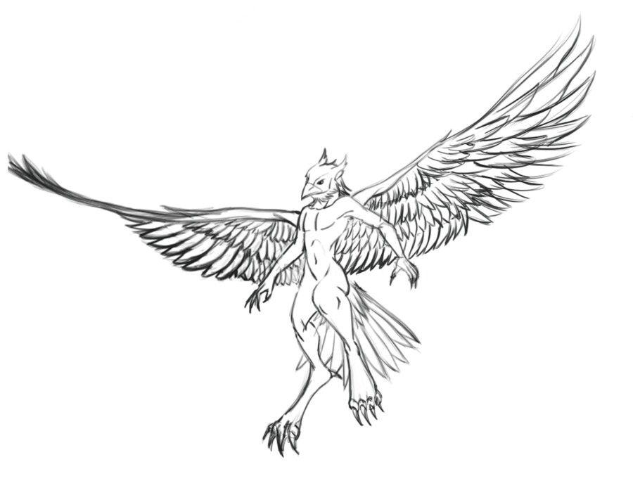 sexy-eagle-bird-furries