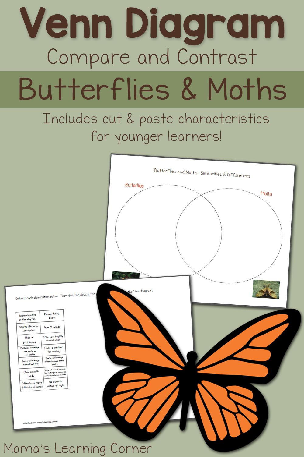 Moths and butterflies venn diagram worksheet venn diagrams download a moths and butterflies venn diagram for your young learner includes writing prompts to cut and paste if desired ccuart Gallery
