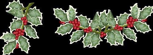 Branches de houx Noël | Houx noel, Noel, Deco noel