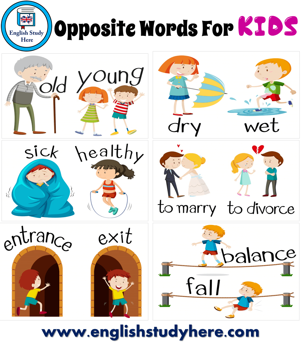 Pin On English Worksheets For Kids [ 1096 x 964 Pixel ]