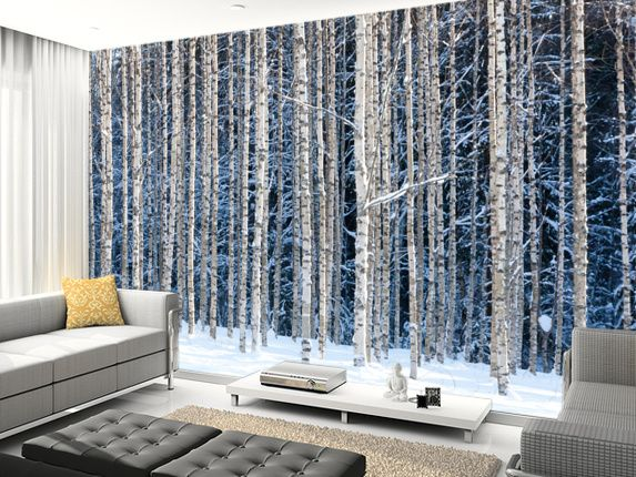 Snowy Birch Forest Wall Mural Living Room Preview Feature Wall Bedroom Birch Tree Wallpaper Tree Wall Murals
