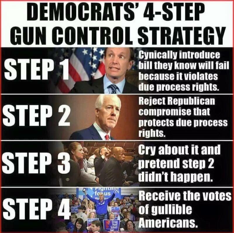 gun collector & Factual Political Humor